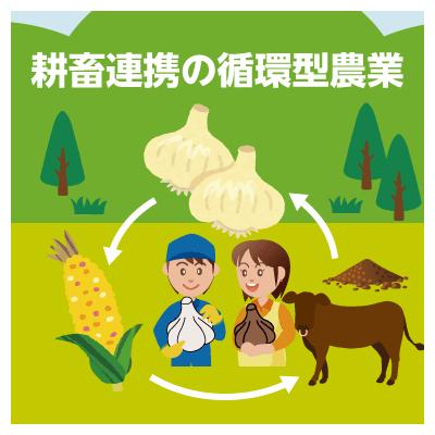 耕畜連携の循環型農業の実践
