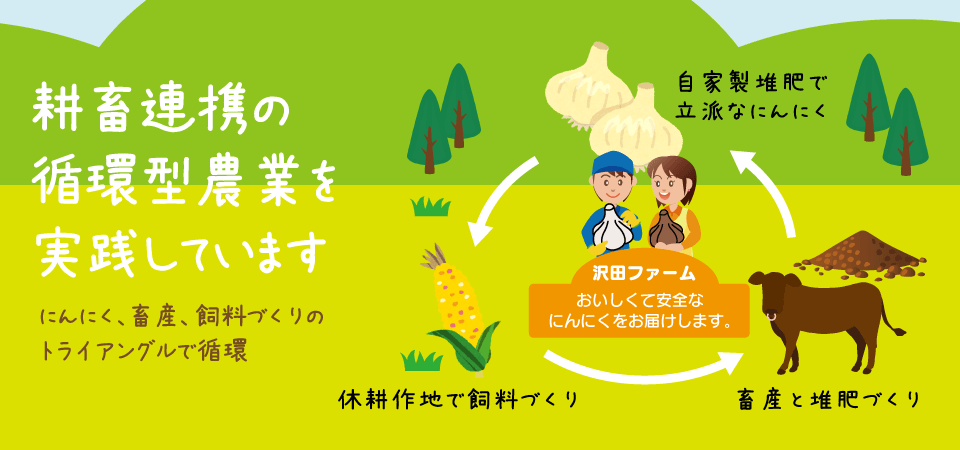 耕畜連携の循環型農業